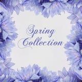 Tema di Fahion della collezione primaverile con i fiori illustrazione di stock
