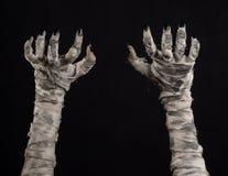 Tema di Halloween: vecchie mani terribili della mummia su un fondo nero Fotografie Stock Libere da Diritti