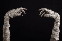 Tema di Halloween: vecchie mani terribili della mummia su un fondo nero Fotografia Stock