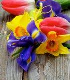 Tema di Pasqua Fotografia Stock