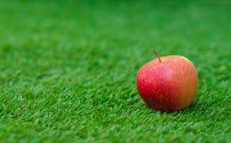 Tema di verdure sano dell'alimento: mela matura rossa che si trova sull'erba verde Fotografie Stock