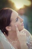 Tema do casamento Fotografia de Stock Royalty Free