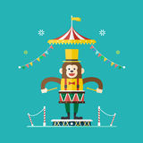 Tema do circo do baterista do macaco, ilustração do vetor Imagem de Stock