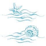 Tema do mar ilustração do vetor