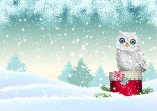 Tema do Natal, coruja branca que senta-se na caixa de presente vermelha na paisagem nevado, ilustração Foto de Stock