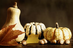 Abóboras e folhas de outono fotos de stock royalty free