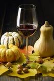 Abóboras e folhas de outono imagem de stock royalty free