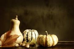 Abóboras e folhas de outono foto de stock