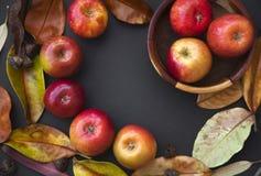 Tema do outono: Maçãs vermelhas, folhas de outono na obscuridade Imagens de Stock Royalty Free