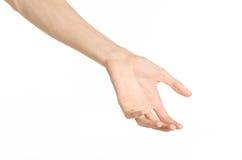 Tema dos gestos de mão: a mão humana mostra gestos isolada no fundo branco no estúdio Foto de Stock Royalty Free