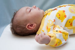 Tema Ducky recién nacido Imagen de archivo libre de regalías