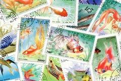 tema för fiskportostämplar Arkivfoto
