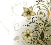 Tema floral Foto de archivo