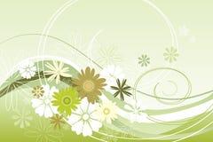 Tema floral en verde Imágenes de archivo libres de regalías