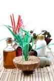 Tema natural do wellness imagens de stock royalty free