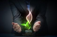 Tema orgánico de la ciencia con la DNA Imágenes de archivo libres de regalías