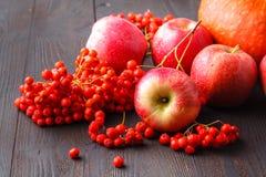 Tema stagionale, mela, zucche e berrie del raccolto degli agricoltori locali immagine stock libera da diritti