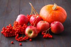 Tema stagionale, mela, zucche e berrie del raccolto degli agricoltori locali fotografie stock libere da diritti