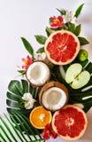 Temabakgrund eller mall f?r sommar tropisk med ett utrymme f?r en text, olika frukter, gr?na sidor och blommor arkivfoto