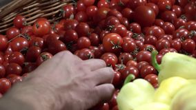 Temahälsa och naturlig mat Närbilden av handen av ett Caucasian maninnehav, plockningtomater i en vtrine i en supermarket boxas lager videofilmer