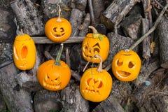 Temas de Halloween La composición de seis talló las calabazas de Halloween en fondo de madera Las calabazas con diverso Halloween Foto de archivo