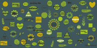 Temas orgánicos del paquete mega del icono y fondos en blanco para sus etiquetas adicionales foto de archivo libre de regalías
