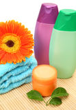 Temas para una ducha Foto de archivo libre de regalías
