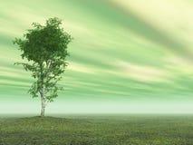 tematu zielony drzewo Zdjęcie Royalty Free