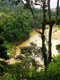 Tembeling flod, Taman Negara, Malaysia Arkivbilder