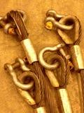 Temblak i szakle obraz royalty free
