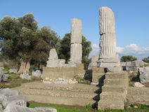 Temenos of the temple Dionysos in Theos Stock Photo