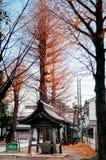 Temizuya water ablution pavilion at YASAKA Jinja in Sawara, Kato. Old ancient wooden Temizuya water ablution pavilion at Yasaka Jinja Shinto Shrine in Sawara Stock Image