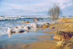 Tempête à la mer baltique Nature, arbres et air frais Image libre de droits