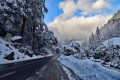Tempête de dégagement au parc national de Yosemite photo stock