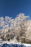 tempête de glace Photographie stock libre de droits