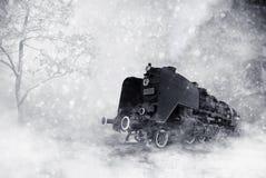 Tempête de l'hiver Photographie stock libre de droits