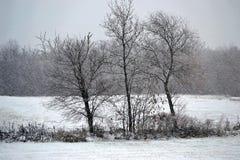 Tempête de l'hiver Photo libre de droits