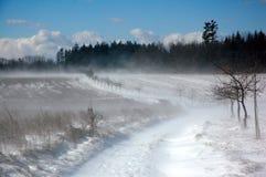 Tempête de neige 2 de neige photographie stock libre de droits