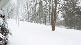 Tempête de neige avec de grands flocons de neige banque de vidéos