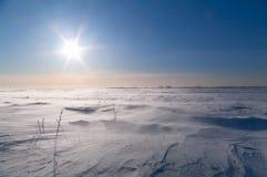 Tempête de neige dans le domaine Photo libre de droits