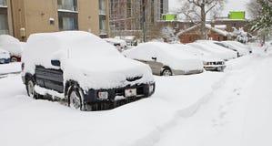 Tempête de neige de Denver, 29 octobre 2009 Photographie stock libre de droits