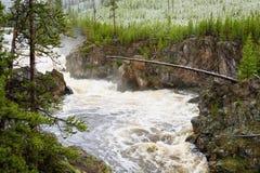 Tempête de neige de fleuve de Firehole au printemps image libre de droits