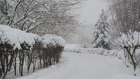 Tempête de neige en parc vide de ville banque de vidéos