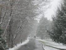 Tempête de neige sur la ceinture verte Boise Idaho images stock