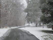 Tempête de neige sur la ceinture verte Boise Idaho photo libre de droits
