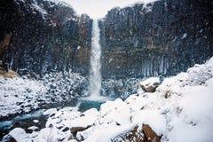 Tempête de neige turbulente à la cascade de Svartifoss Photographie stock libre de droits