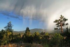 Tempête de pluie Images stock