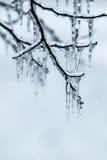 Tempête de pluie verglaçante photos libres de droits