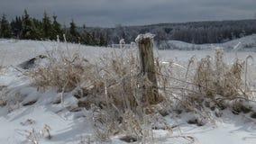 Tempête de pluie verglaçante d'hiver à la ferme Photographie stock libre de droits