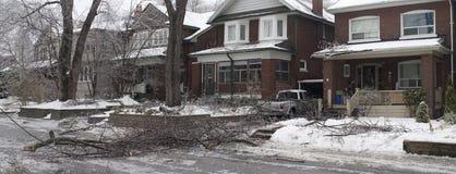 Tempête de pluie verglaçante de Toronto photo libre de droits